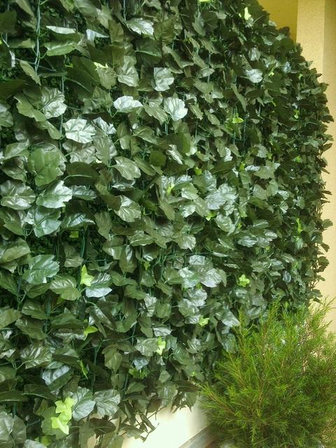 Brise Vue En Lierre brise vue aspect feuillage vert hauteur 1 mètre.